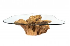 Roots coffee table Code #2098