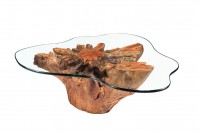 Roots coffee table Code #58
