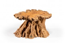 Roots coffee table