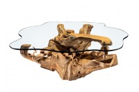 Roots coffee table Code #3053