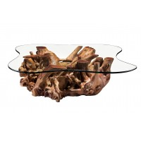 Roots coffee table Code #3148